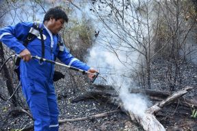 Evo Morales fighting fires